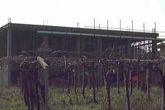 Scuola-Elementare-Cda-Marcianese-08-1110x400
